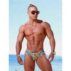 Danny Miami Lord Sky Dkini Brief Swimwear Multi (with inside gold foil print!)