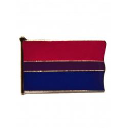 Pin Bi Flag (T5212)